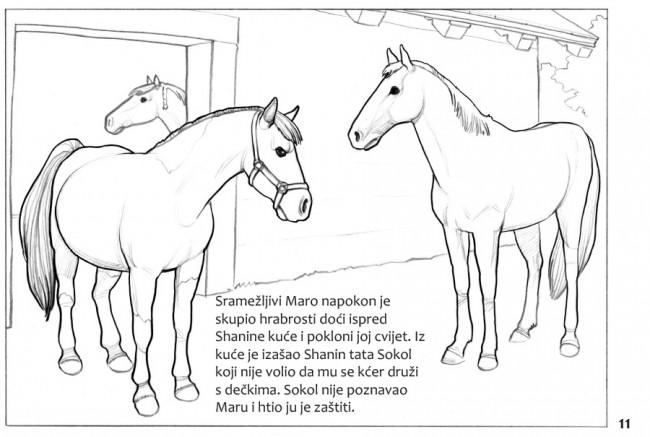 bojanka2015-11